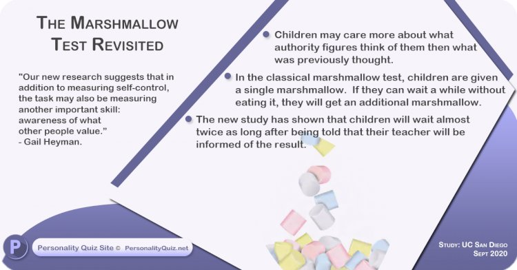 The marshmallow test revisited