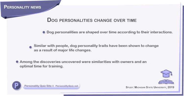 Dog personalities change over time